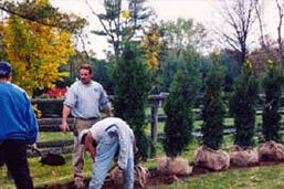 Nursury and Landscape Maintenance Chester County PA