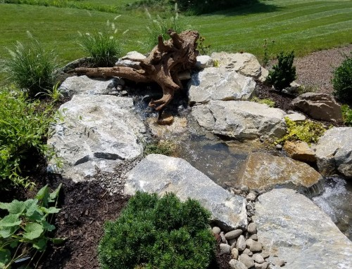 Pondless Waterfalls Before & After