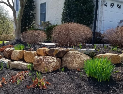 Natural Boulder Retaining Wall