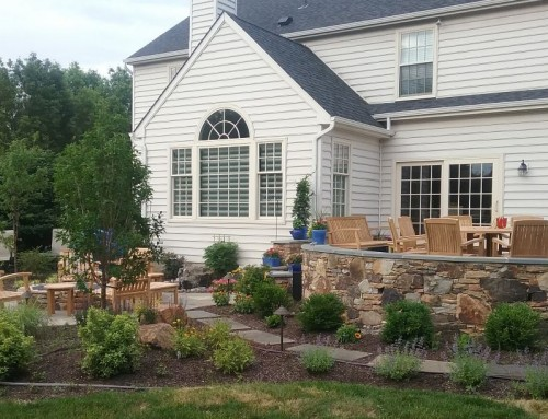 Back Yard Hardscaping with Surrounding Landscaping